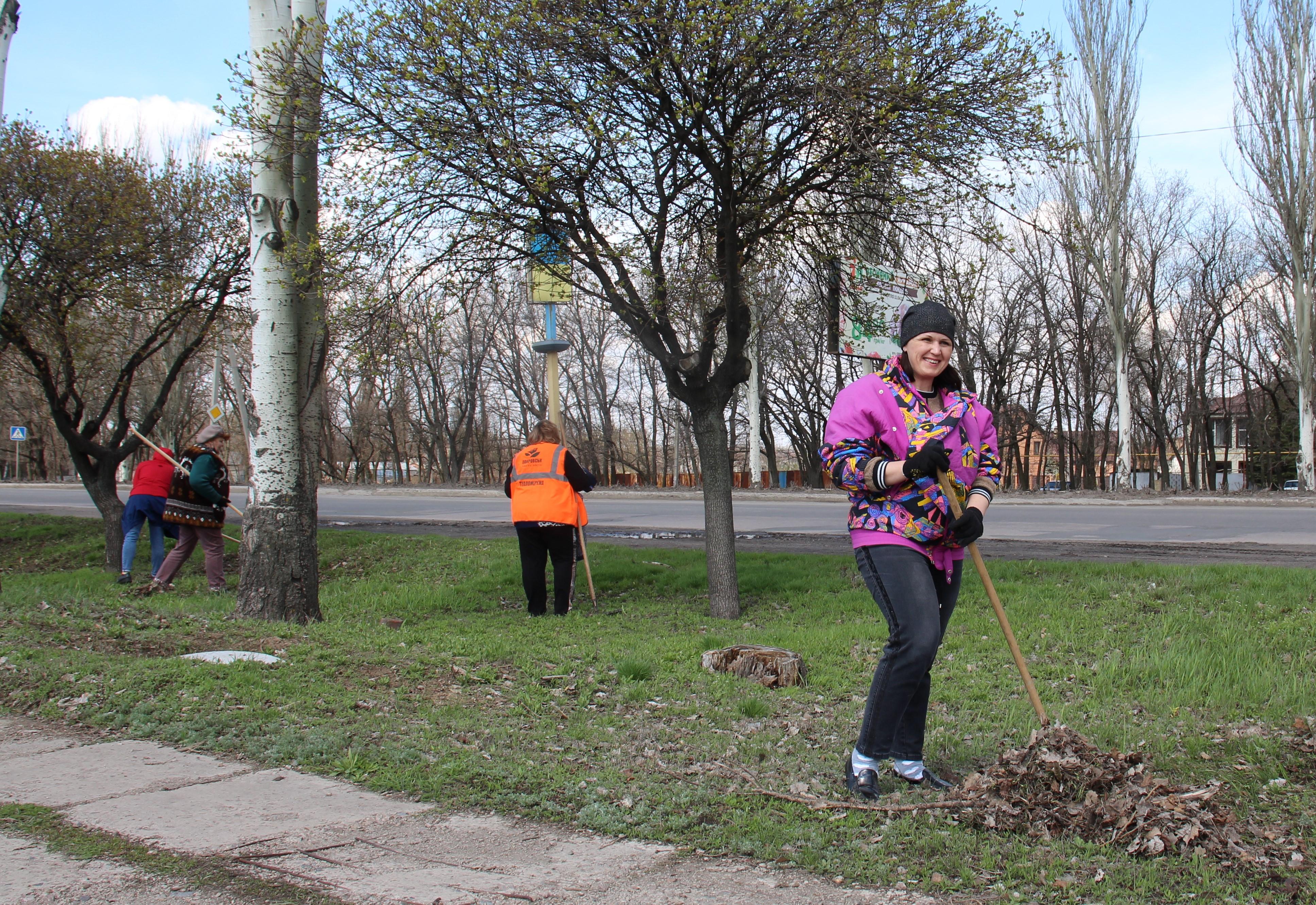 Чергова весняна толока пройшла у Покровську, фото-5
